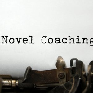 NOVEL-COACHING2-590x400